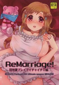 Cover [Saishuuheiki Megane (Uniuni Usagi)] ReMarriage (Bleach) [English]